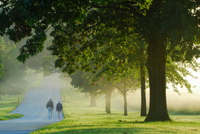 People walking at Valley Forge National Park in a foggy morning at Sunrise